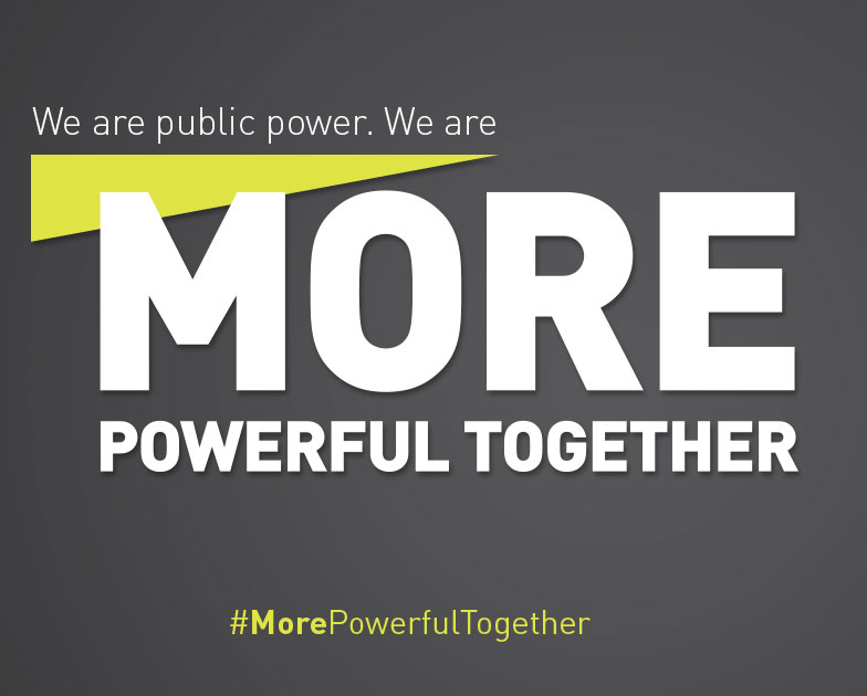 Public Power is More Powerful Together