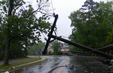 image of power lines down in the road due to stormy weather and high winds